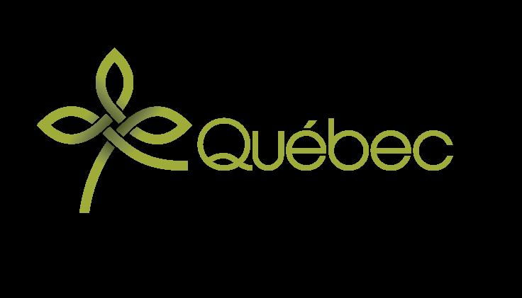 Formation Québec en Réseau